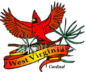 300x251 Bird Of West Virginia, The Red Cardinal Royalty Free Clipart Picture