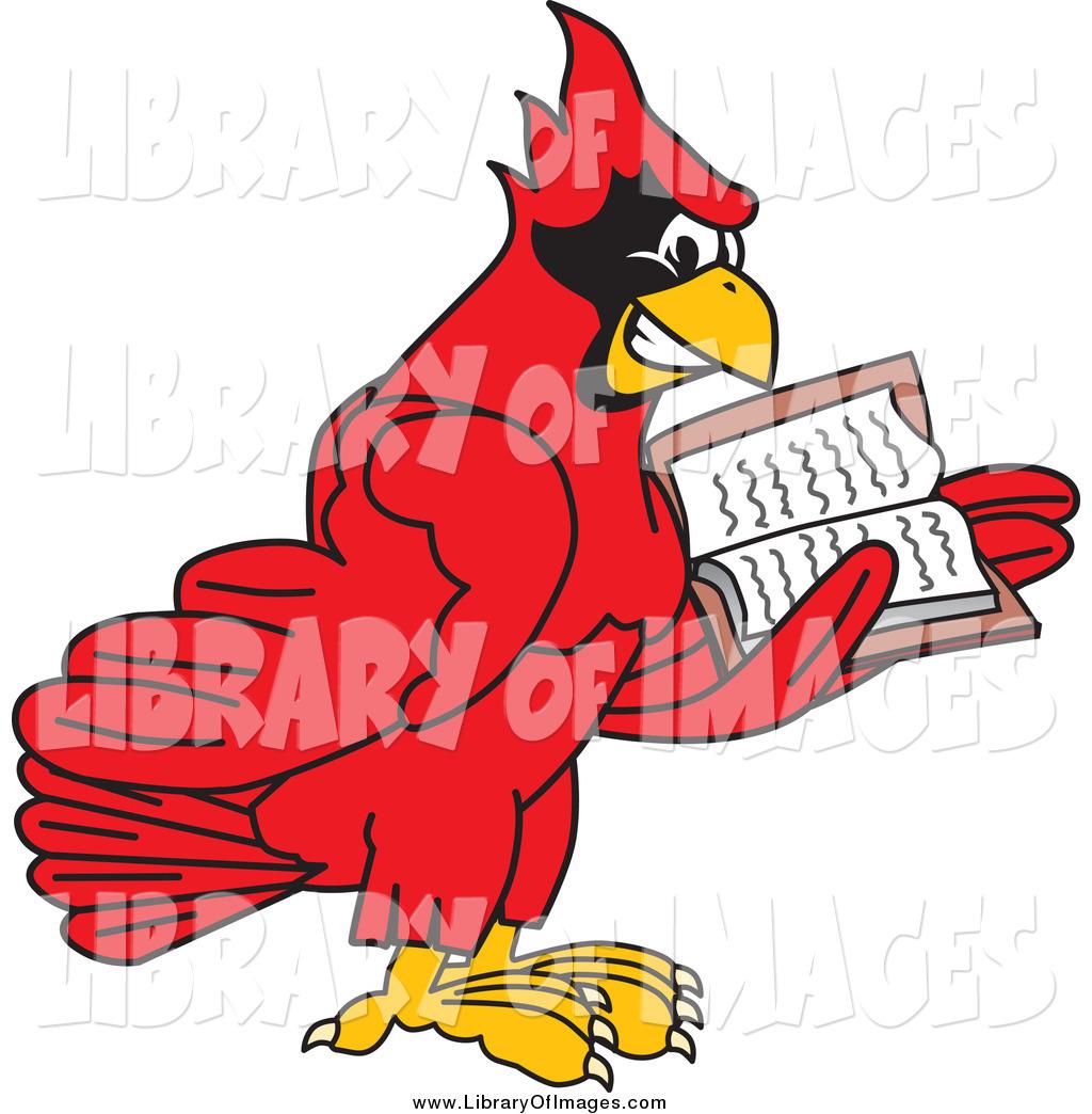 1024x1044 Cardinal Clipart Scared