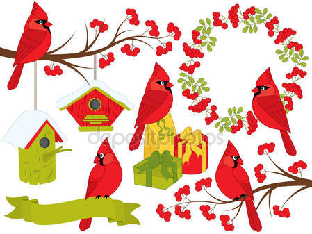 449x337 Cardinals Stock Vectors, Royalty Free Cardinals Illustrations