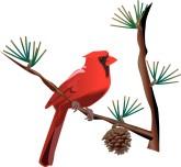 165x152 Christmas Cardinal Clipart
