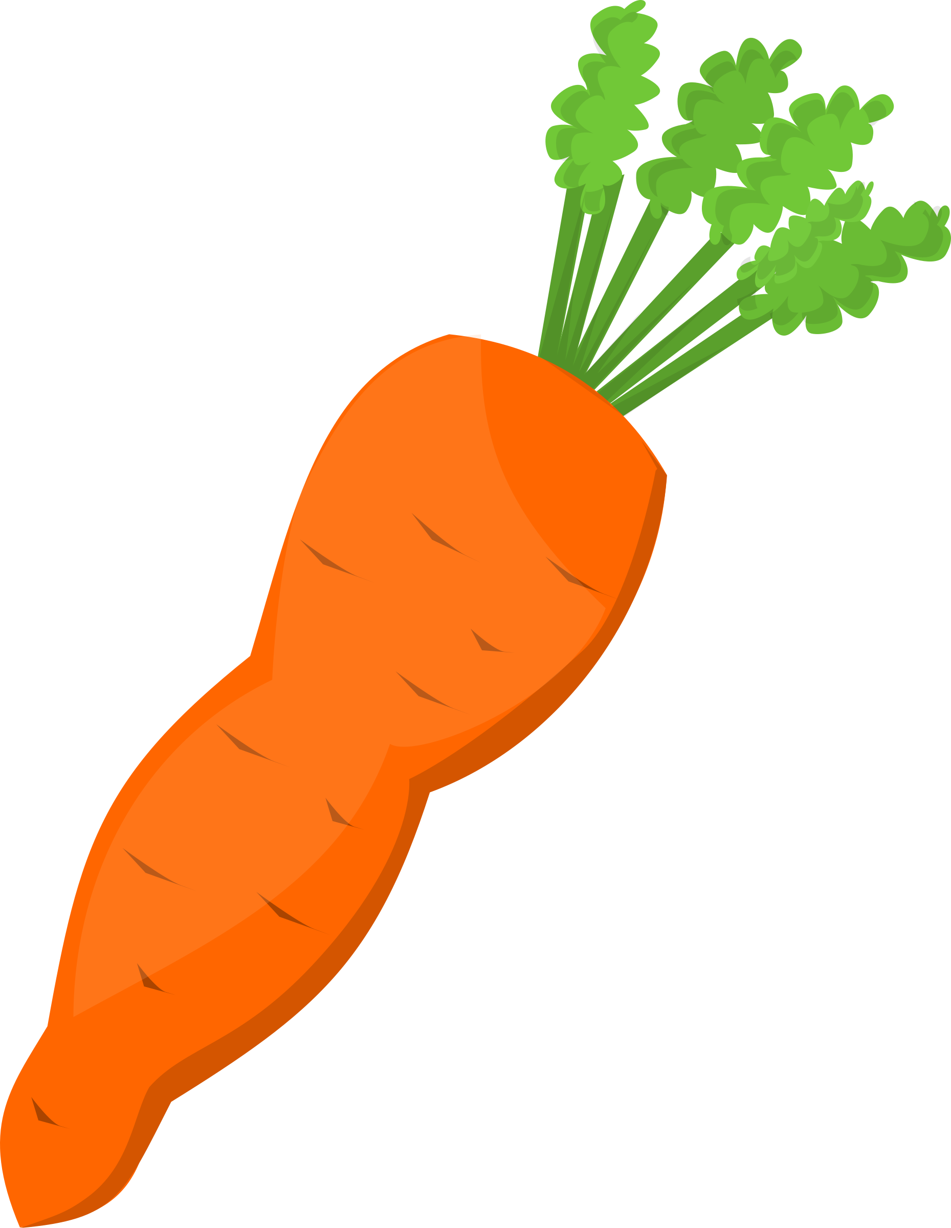 1859x2400 Carrot Clipart Orange Carrot
