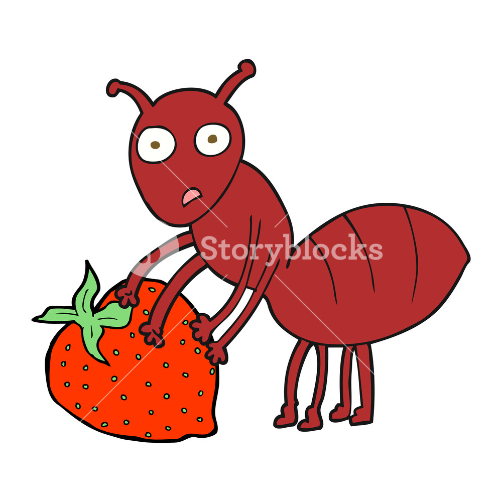 1000x1000 Freehand Drawn Cartoon Ant With Berry Royalty Free Stock Image