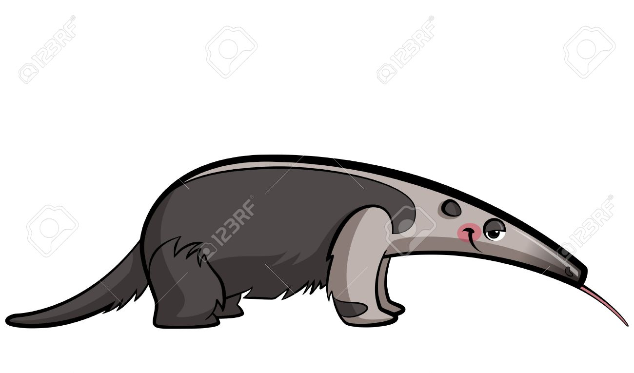 1300x765 Top 82 Anteater Clipart