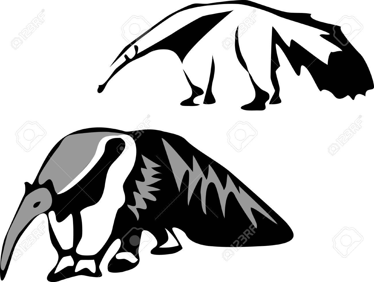 1300x979 75 Giant Anteater Stock Vector Illustration And Royalty Free Giant