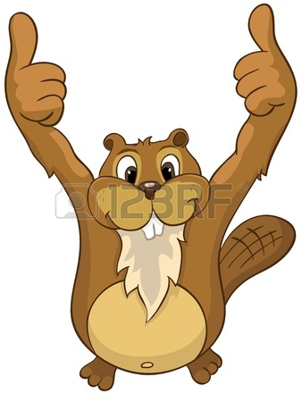 338x450 4,531 Beaver Stock Illustrations, Cliparts And Royalty Free Beaver