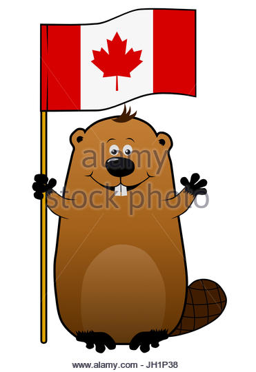 371x540 Cute Smile Beaver Cartoon Stock Photos Amp Cute Smile Beaver Cartoon