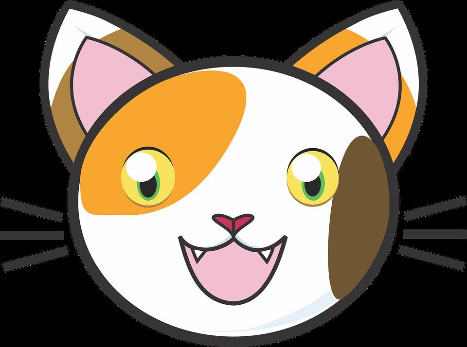cartoon cat face clipart free download best cartoon cat face