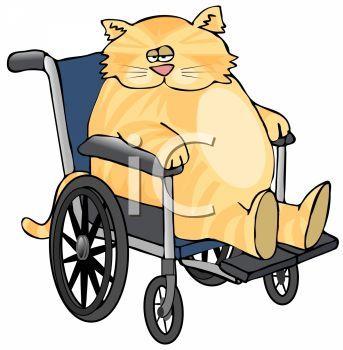 343x350 The Best Fat Cat Cartoon Ideas Fat Cartoon
