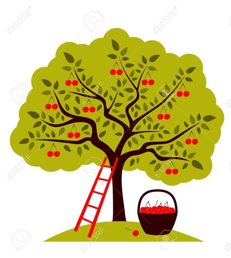 Cartoon Cherry Blossom Tree Clipart