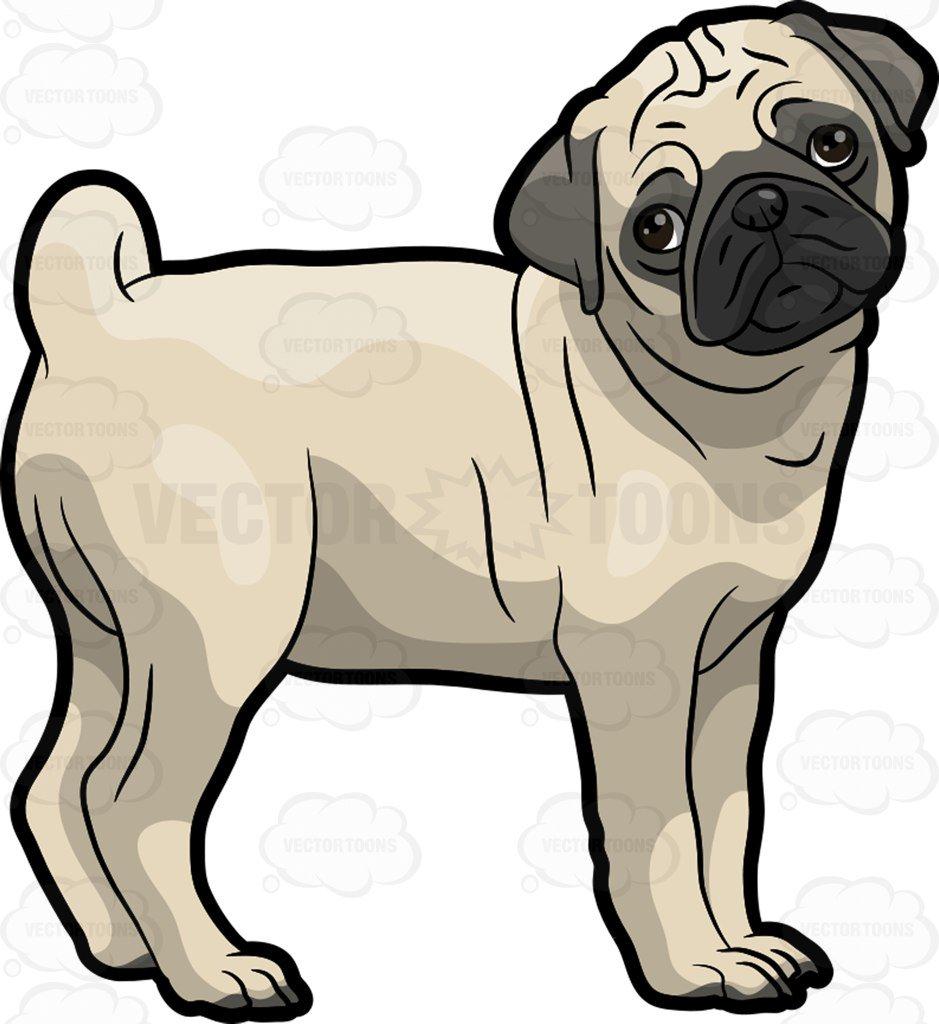 939x1024 A Sad Pug Dog Cartoon Clipart