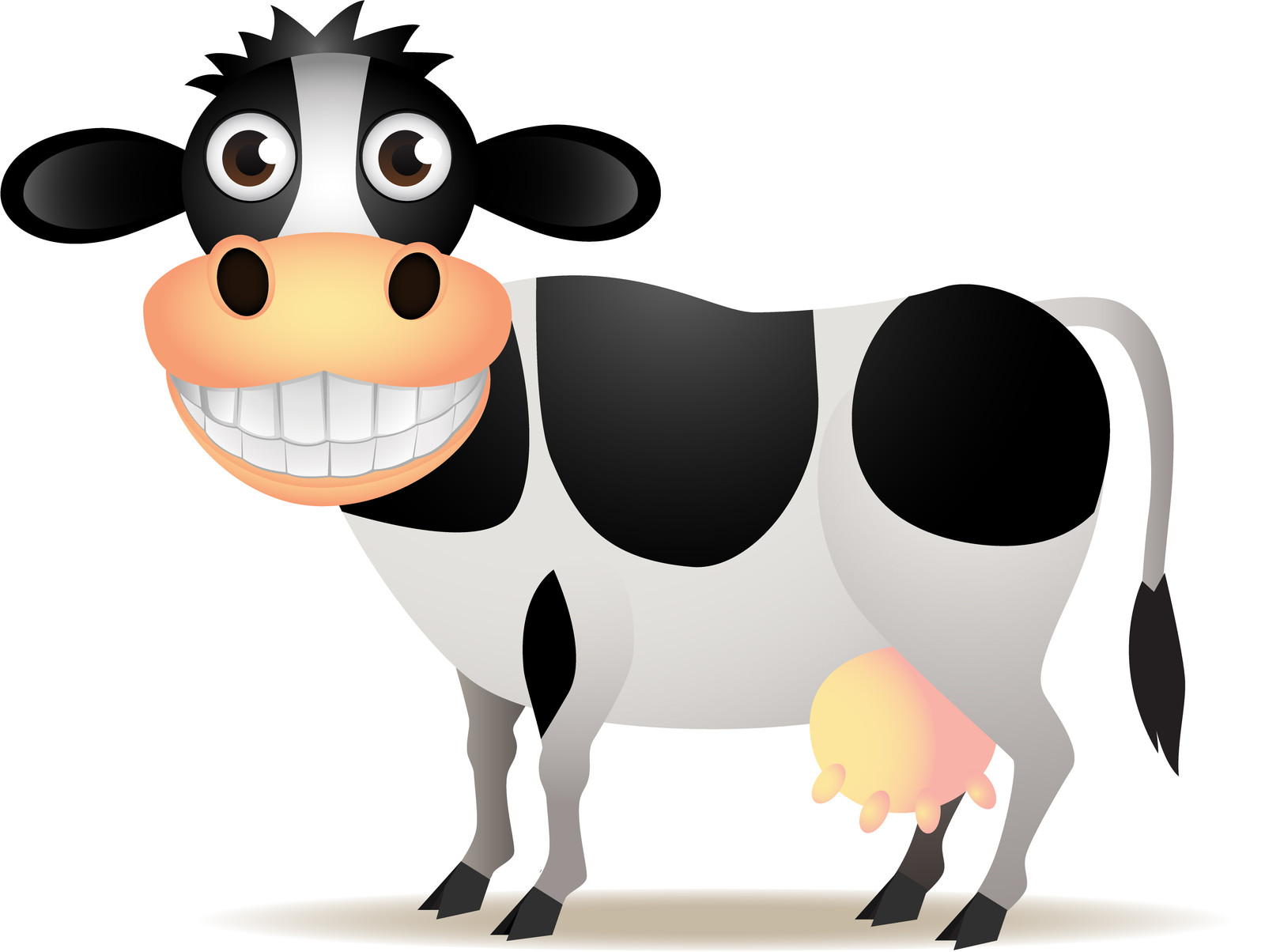 1600x1204 Funny Cow Clipart
