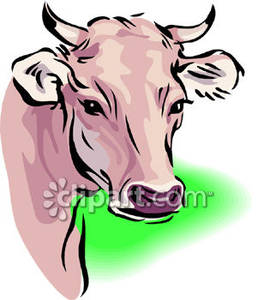 258x300 Cow Clipart Realistic