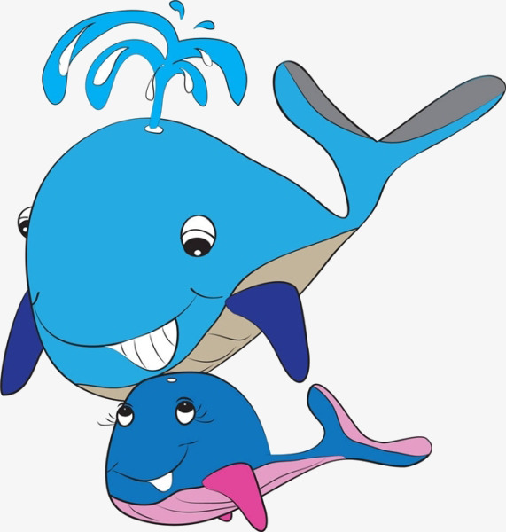 571x600 Cartoon Dolphins, Cartoon, Dolphin, Water Spray Png Image For Free