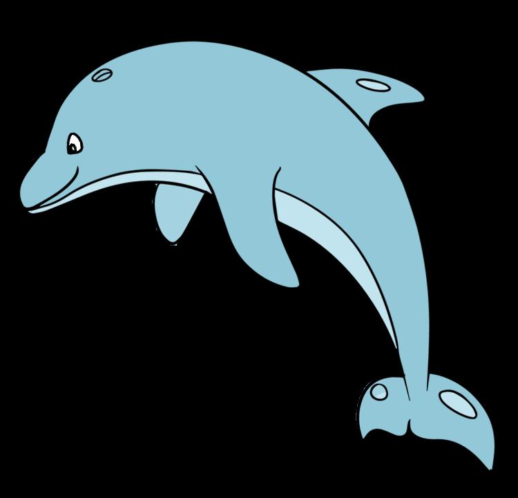 750x720 Dolphins Clipart Cartoon