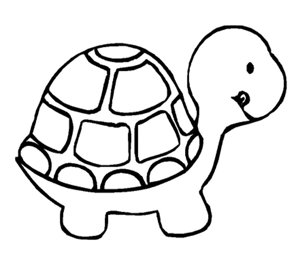 974x825 Coloring Pages Turtle Cartoon Drawing Clipart 4 Coloring Pages