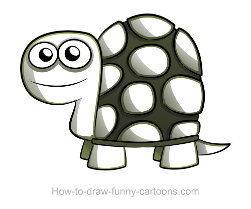 500x417 Turtle Drawings (Sketching + Vector)