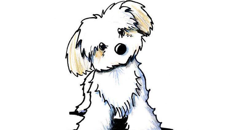 736x425 Cute Animated Dogsbest 25 Cartoon Dog Drawing Ideas