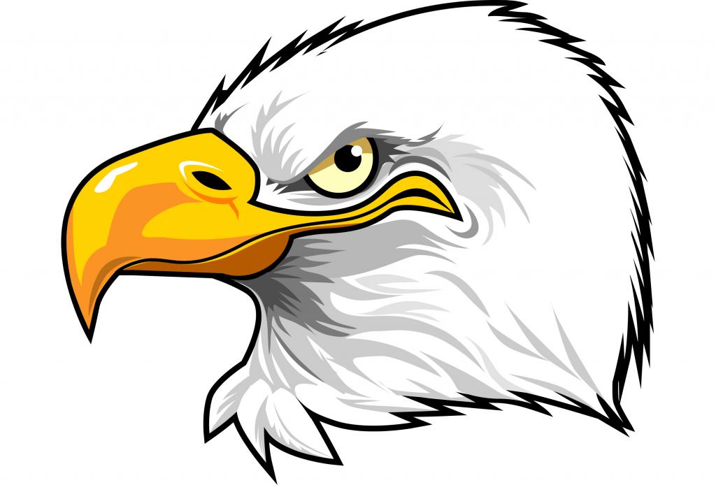 Free Download Best Cartoon Eagle