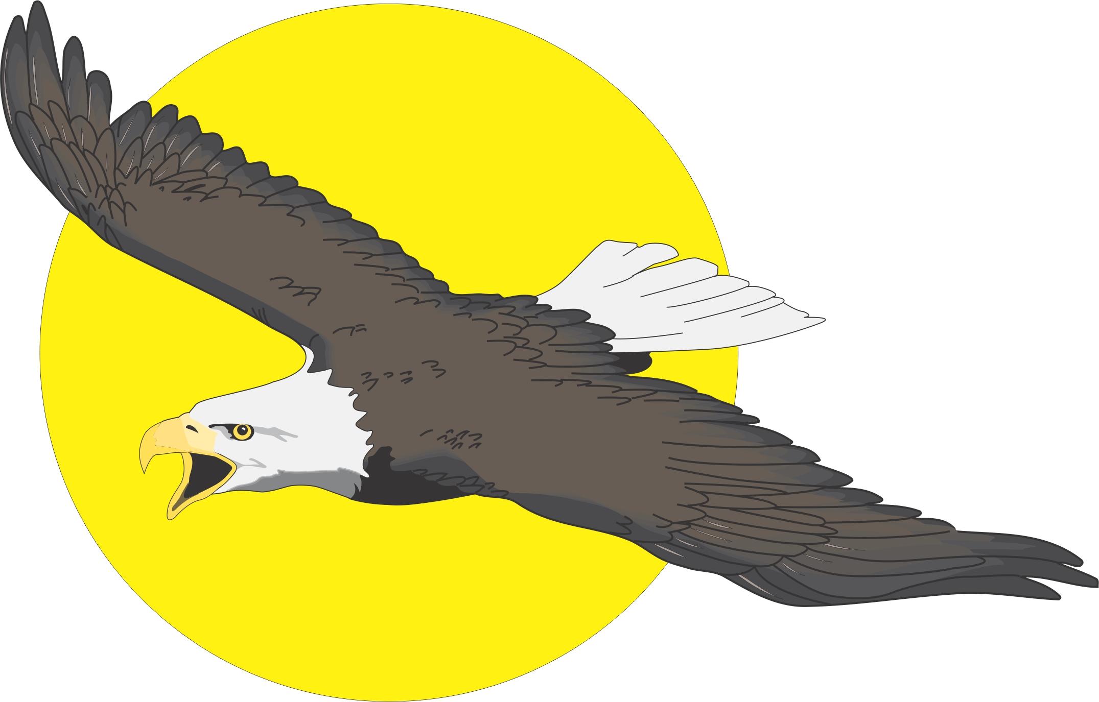 2151x1375 Cartoon Eagle Images