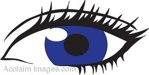 300x152 Eyeball Eyes Cartoon Eye Clip Art Clipart Image 0 Image