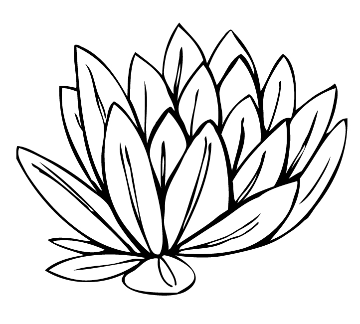 Cartoon Flower Clipart Black And White | Free download ...