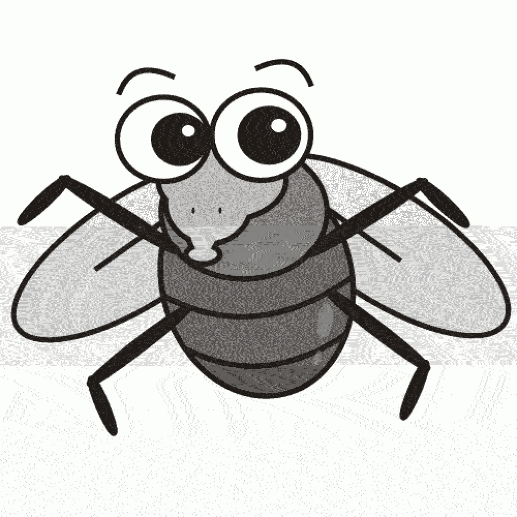 1024x1024 Fruit Fly Clipart