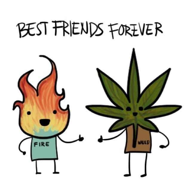 630x630 Best Friend Meme, Funny Friend Memes