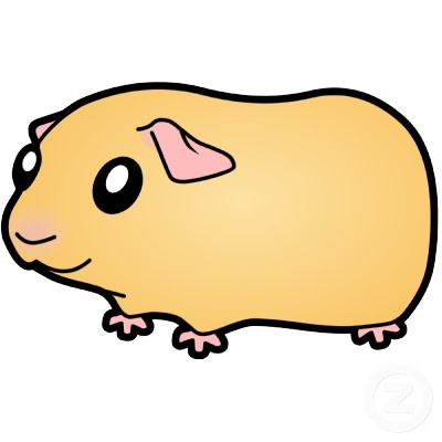 Cartoon Guinea Pig Pictures
