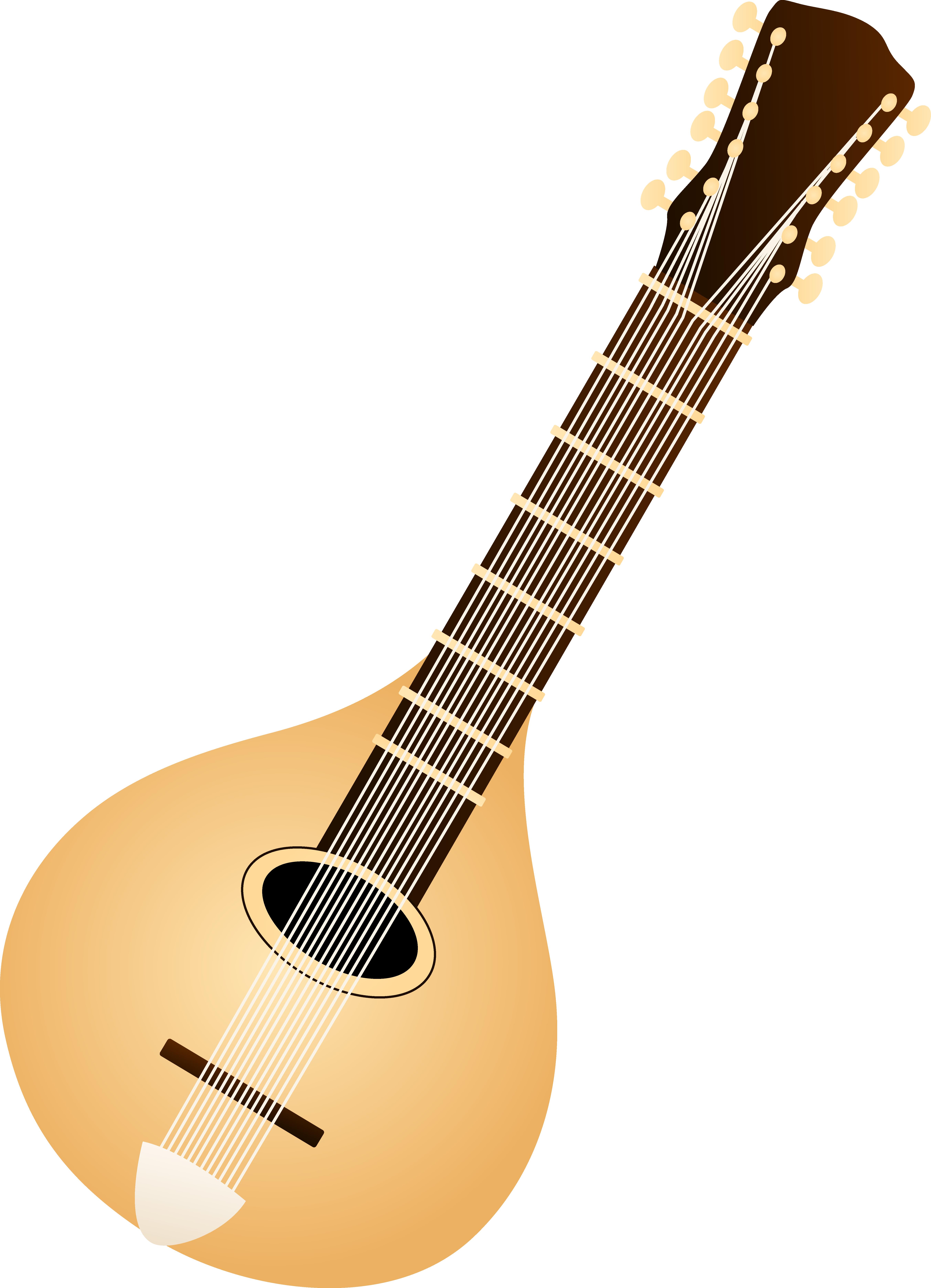 5412x7483 Classic Mandolin Design