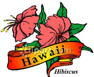 300x248 Hawaii Clipart Hawaii State Flower