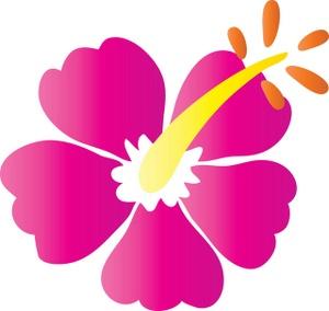 300x284 Hibiscus Clipart Image