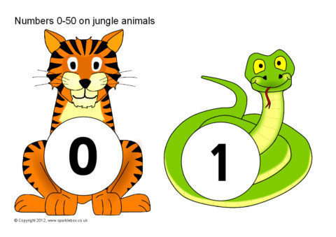 480x339 Numbers 0 50 On Jungle Animals (Sb601)