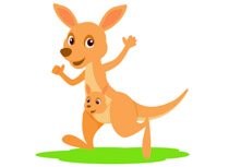 Cartoon Kangaroo Clipart | Free download on ClipArtMag