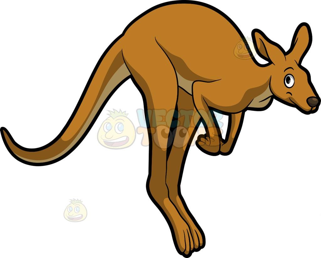 1024x821 A Jumping Kangaroo Cartoon Clipart