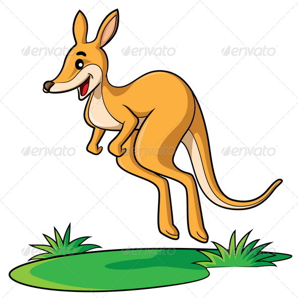 590x590 Kangaroo Cartoon By Rubynurbaidi Graphicriver