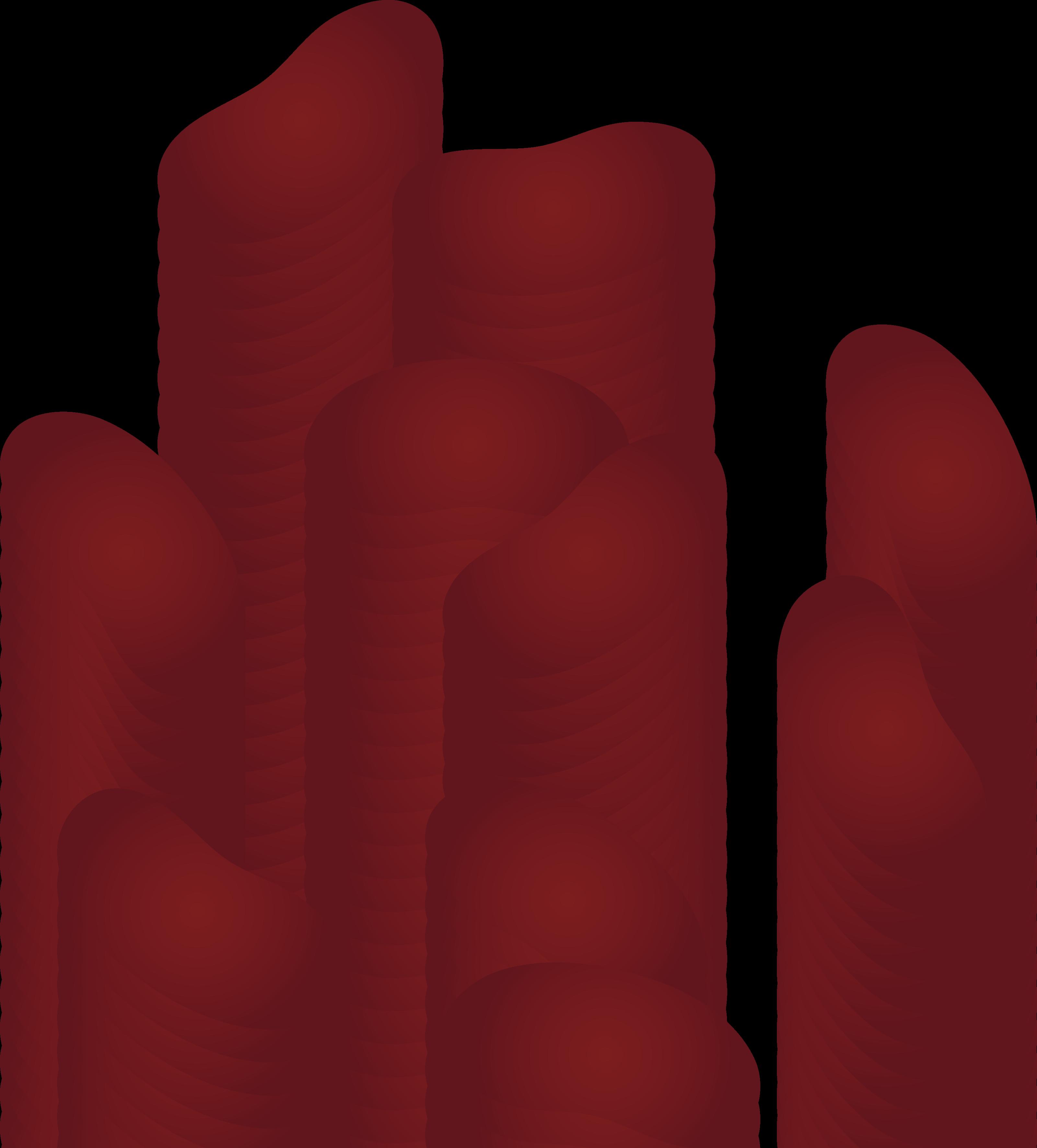 3201x3545 Scattered Kidney Beans