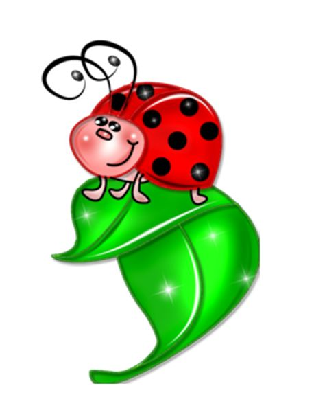 Cartoon Ladybugs Clipart