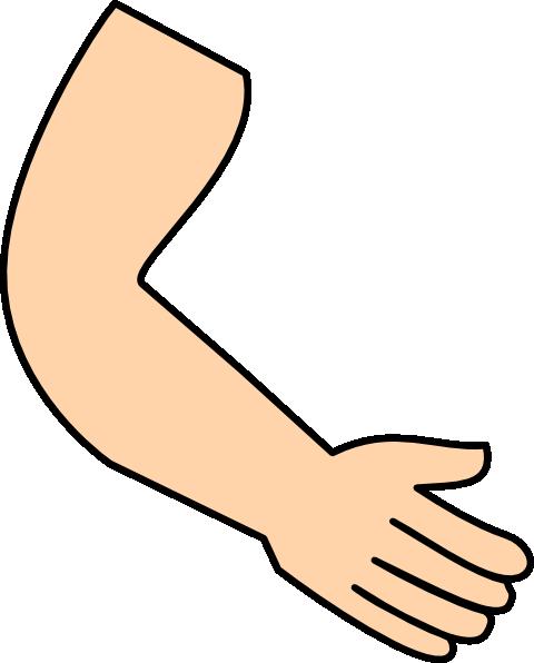 480x596 Cartoon Muscle Arm Clipart