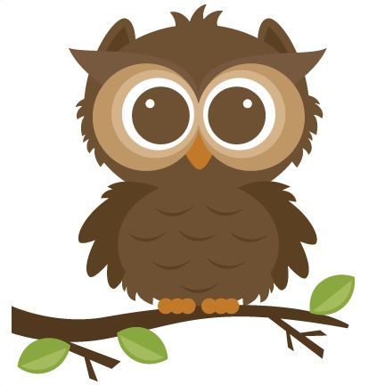 432x432 Owls On Owl Clip Art Owl And Cartoon Owls Id 68412 Clipart Pictures