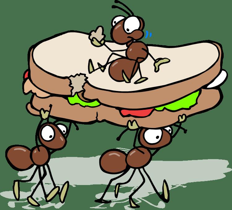 750x681 Ant Clipart Cartoon