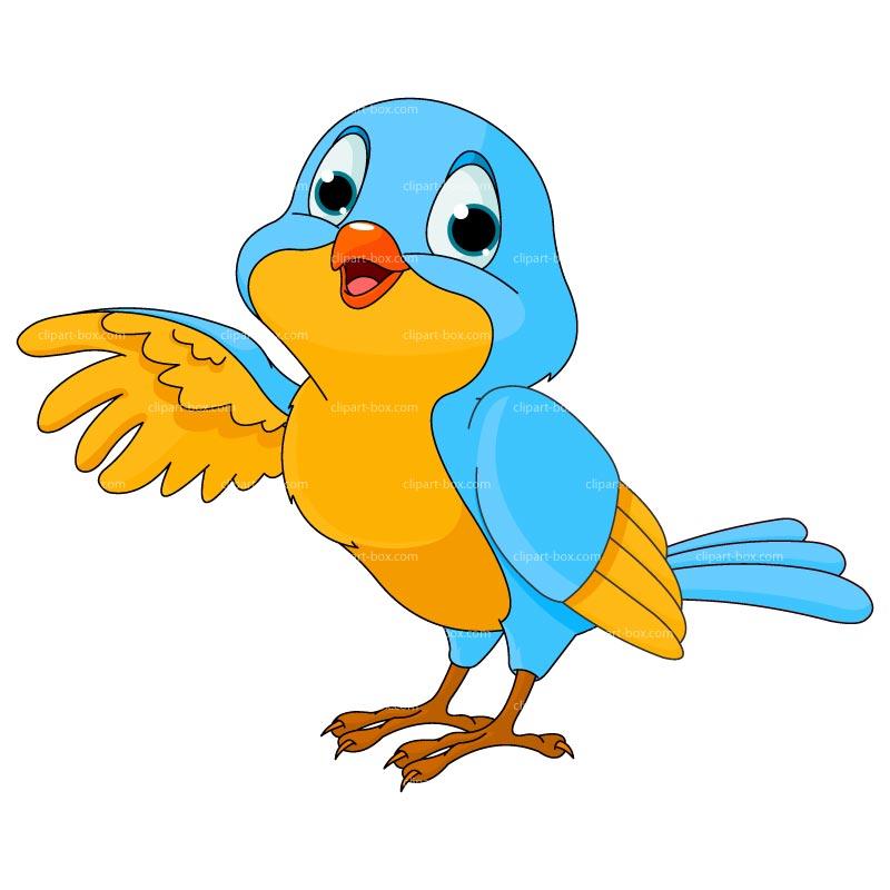 800x800 Cartoon Bird Clipart