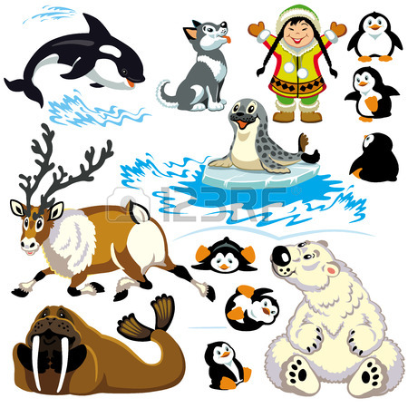 450x450 Set With Cartoon Animals Of Arctic Isolated Pictures For Little