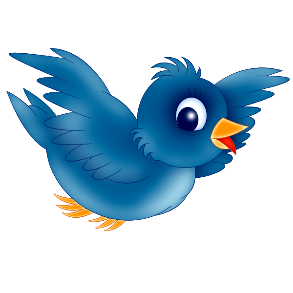 600x600 Blue Bird'S