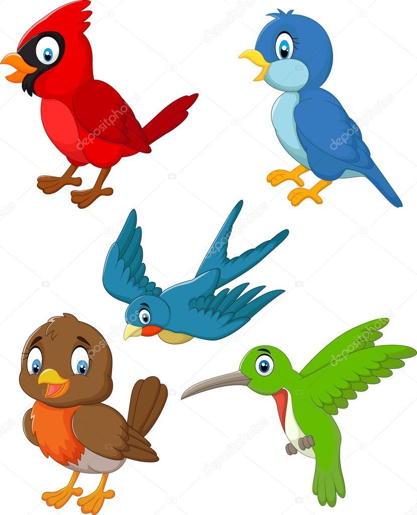 830x1024 Cartoon Birds Collection Set Stock Vector Tigatelu