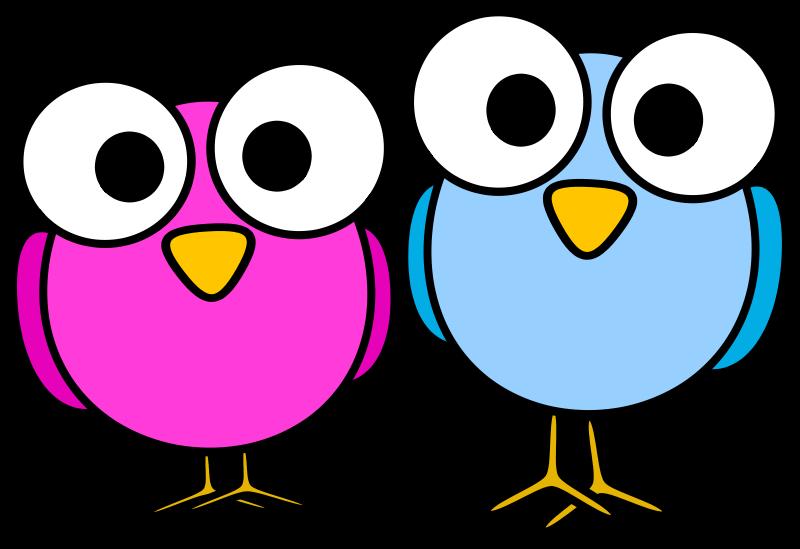 800x549 Free Two Cartoon Birds Clip Art