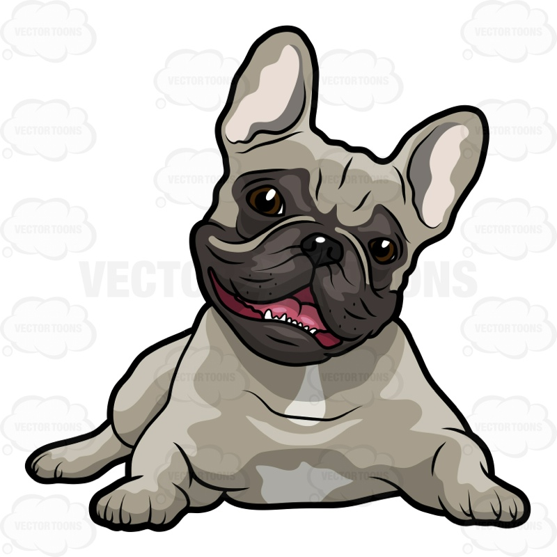 800x800 French Bulldog Cartoon Favorite Bulldogs French