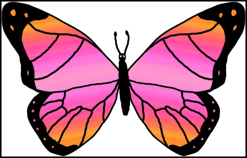 821x527 Butterflies Cartoon Butterfly Clipart
