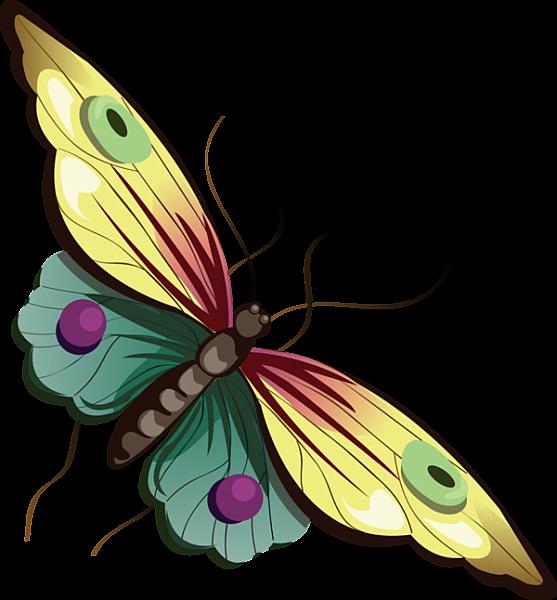 557x600 Cartoon Yellow And Blue Butterfly Clipart Butterflies Art