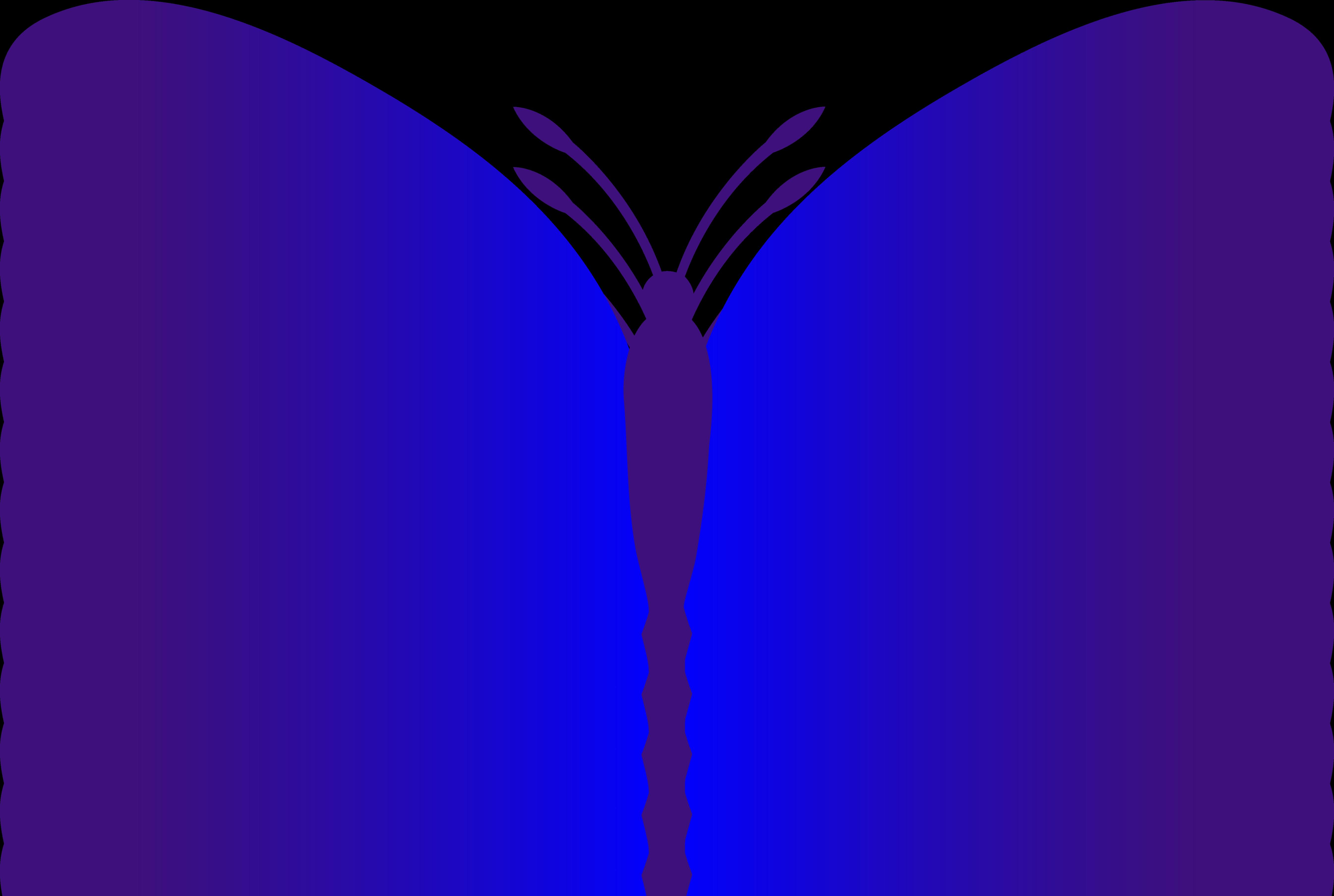 5381x3614 Simple Blue Butterfly