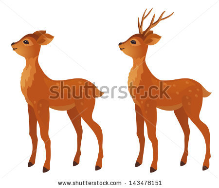 450x386 Dear Clipart Female Deer